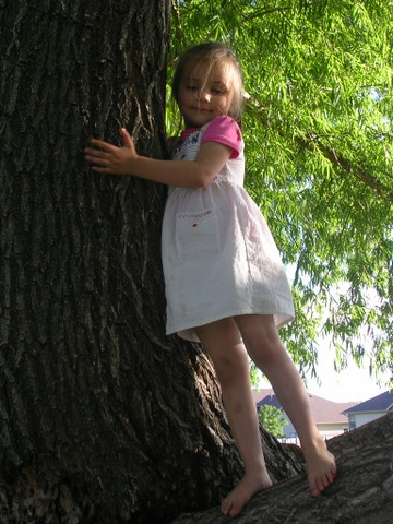 July 4 2009 ella in tree