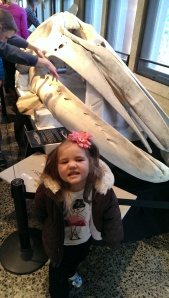 Say WHALE SKULL!