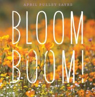 bloom boom