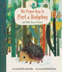proper way to meet a hedgehog